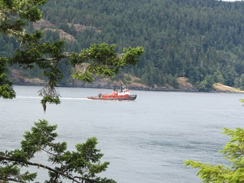 A tug heads north through Seymour Narrows, as seen from the Maude Island Trail
