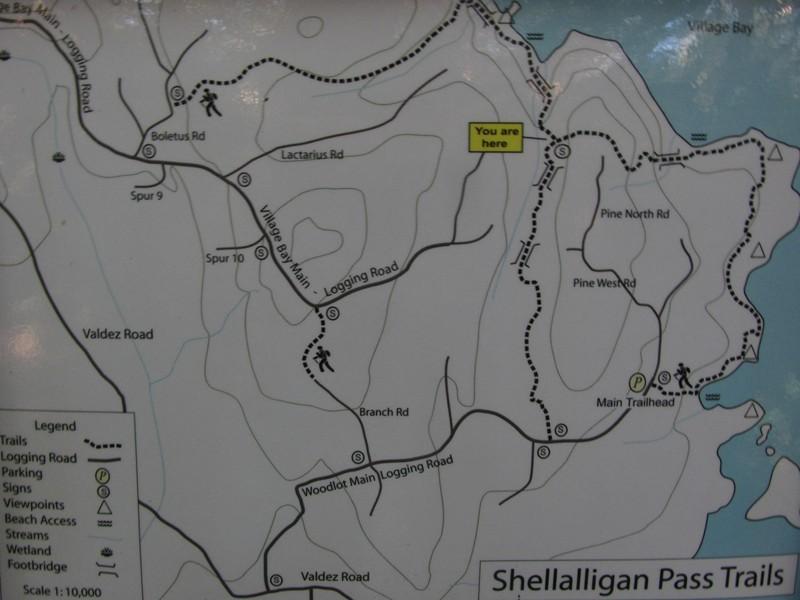 Shelalligan Pass Trails Quadra Island Trails